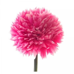 Hot Pink 43cm Spiky Chrysanthemum 870107
