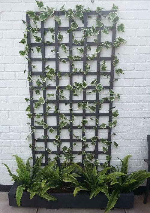 Variegated Ivy Garland 869705