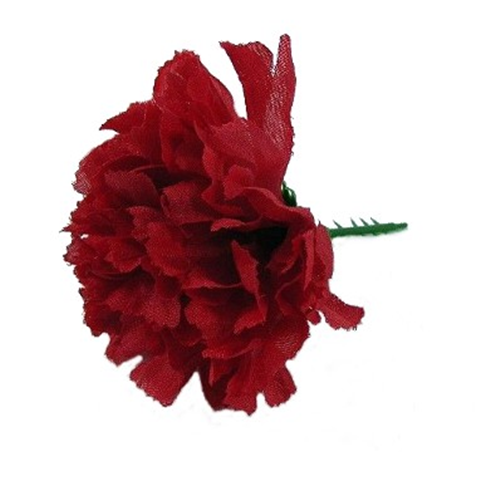 Red Carnation Picks