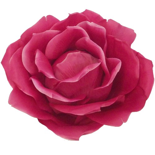 Hot Pink Extra Large Rose 876055